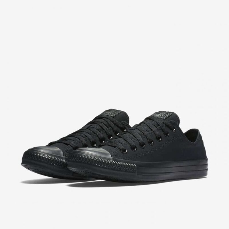 Converse Chuck Taylor All Star Slip Low Top 2