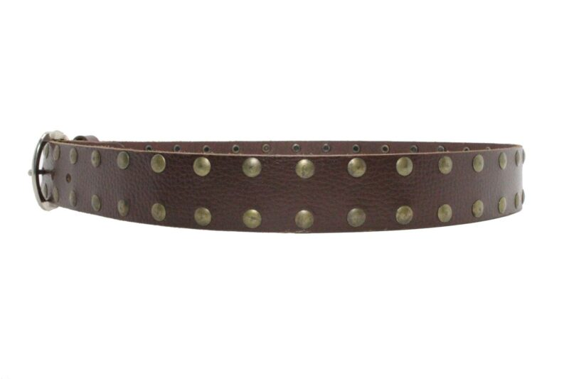 2 Row Brass Studded Brown Leather Belt 2