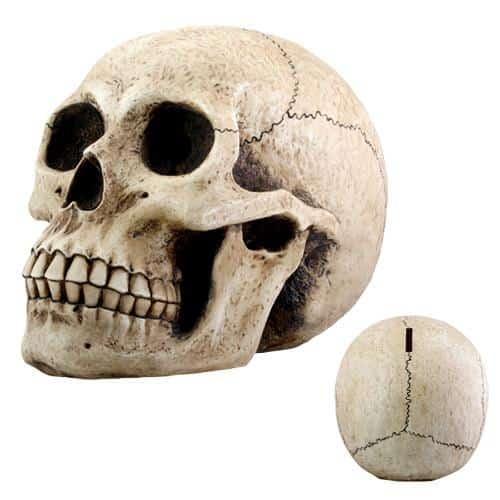 Human Skull Money Bank