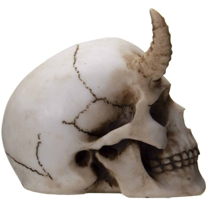 Horned Skull Figurine side