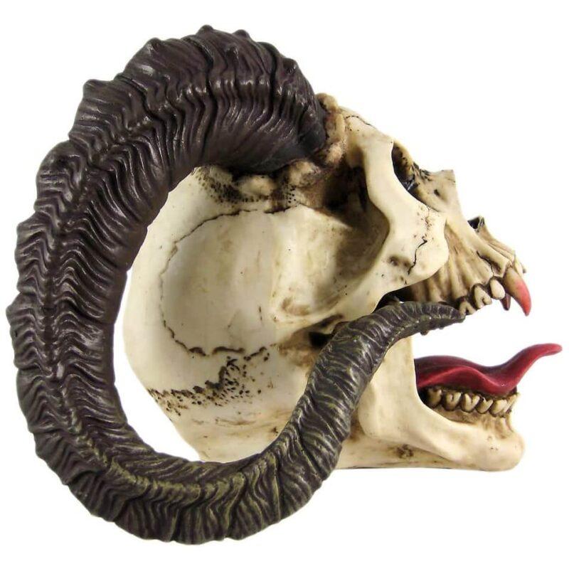 Ram Horned Skull Head side